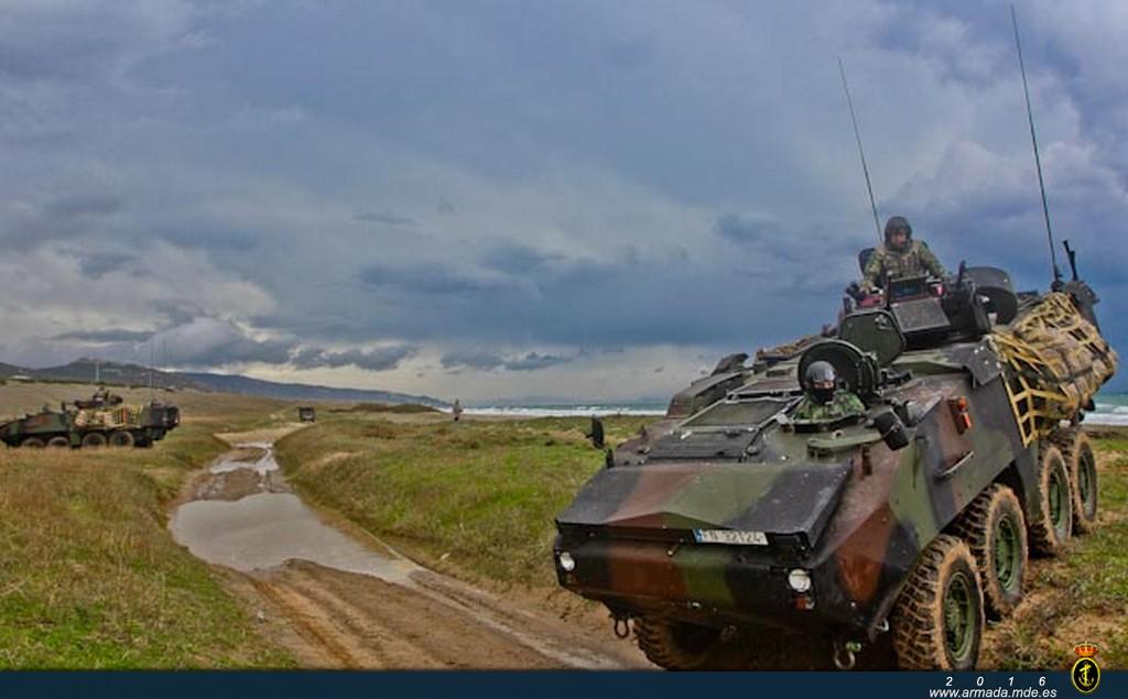 Vehículos de combate de infantería Piraña cortando un camino durante el ejercicio GRUFLEX